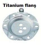 Titanium Flanş